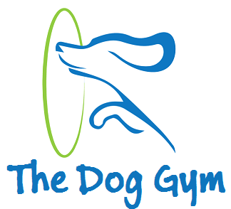 The Dog Gym